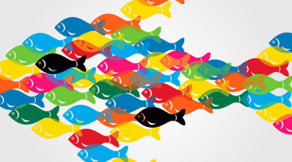 Ayudas a la transformación de los productos de la pesca