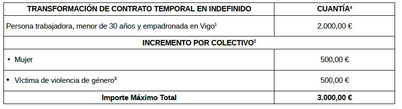 Ayudas empleo Concello de Vigo