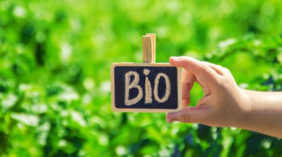 ayudas de ecoinnovación comercial