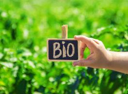 Actuaciones en materia de ecoinnovación comercial