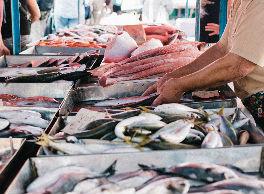 Ayudas a lonjas pesqueras